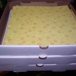 Pizza box storage for scrapbook paper