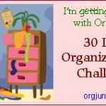 30 Day Org Challenge – Small Space Category