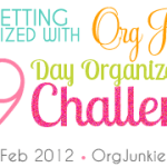 29 Day Organizing Challenge Questions
