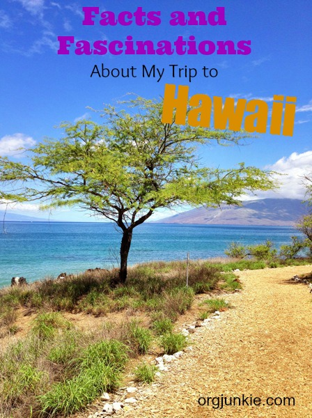 Facts and Fascinations About My Trip to Hawaii