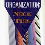Travel Organization: Men's Neck Ties
