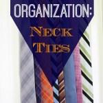 Travel Organization: Men's Neck Ties