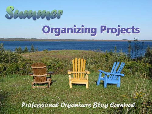Summer Organizing Projects