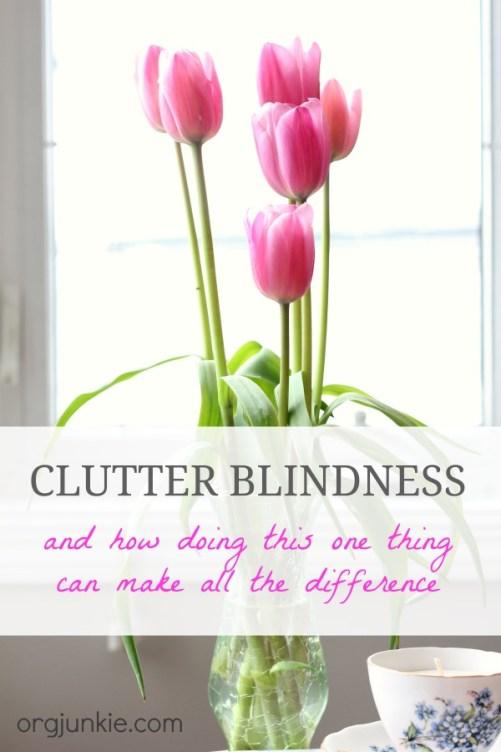 Clutter Blindness