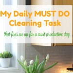 My Daily Must Do Morning Cleaning Task