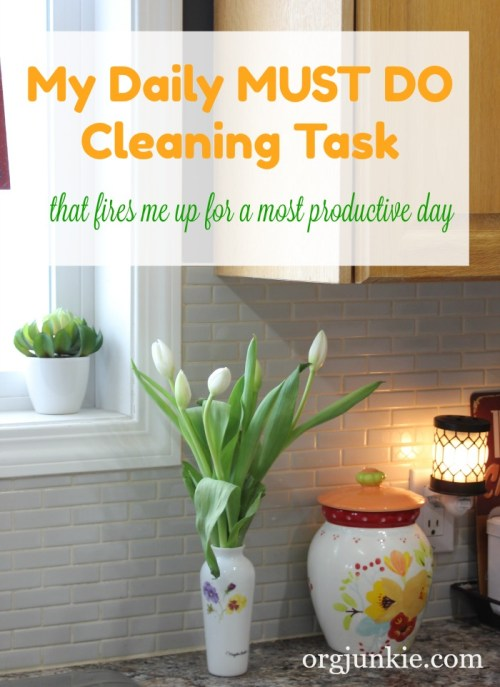 My Daily Must Do Cleaning Task