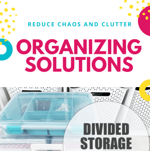 Home Organizing Solutions: Divided Storage Containers