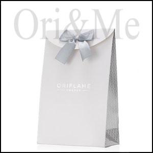 Cardboard Small Gift Bag Silver