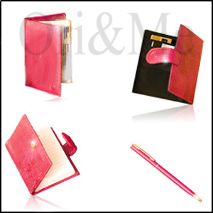 New Pink Passport Folder, Pen, Notebook and Wallet