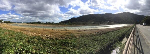 桂川のパノラマ写真