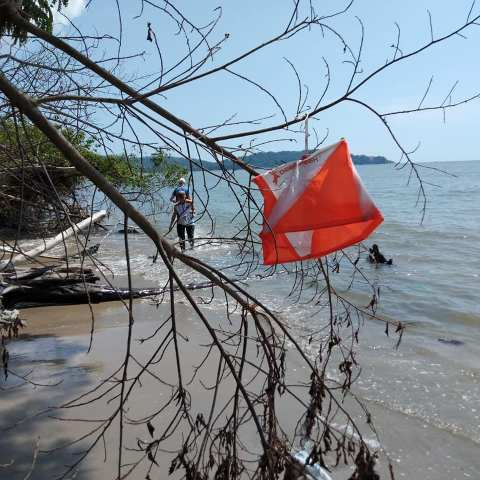 Orienteering in tropical Malaysia, one of the fastest growing Asian orienteering countries. Pictured: Tropical Orienteering Week 2019