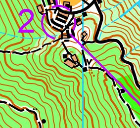 A sample orienteering map from Hong Kong