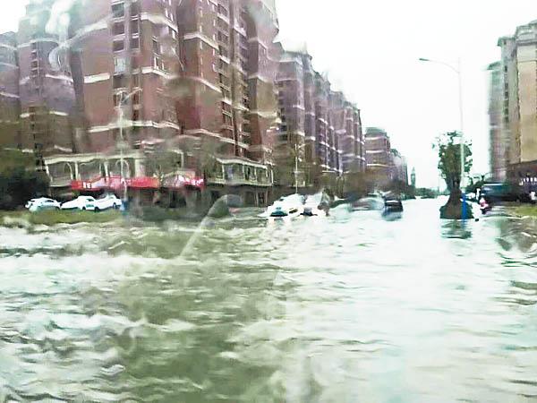 雲雀登陸上海 淹4400畝農田 - 東方日報