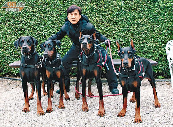 成龍唔怕狗咬怕打針 - 東方日報