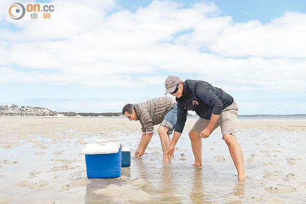 南澳艾爾半島 3F「蠔」情 - 東方日報