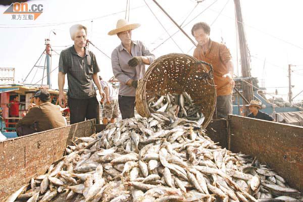 漁民   [組圖+影片] 的最新詳盡資料** (必看!!) - www.go2tutor.com