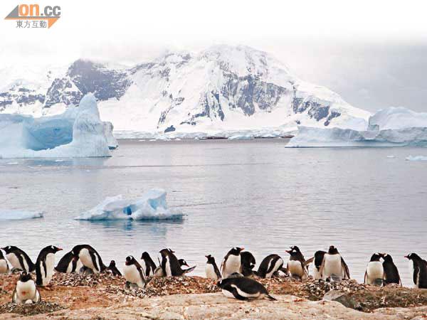 17中學生征南極挑戰極限 - 東方日報
