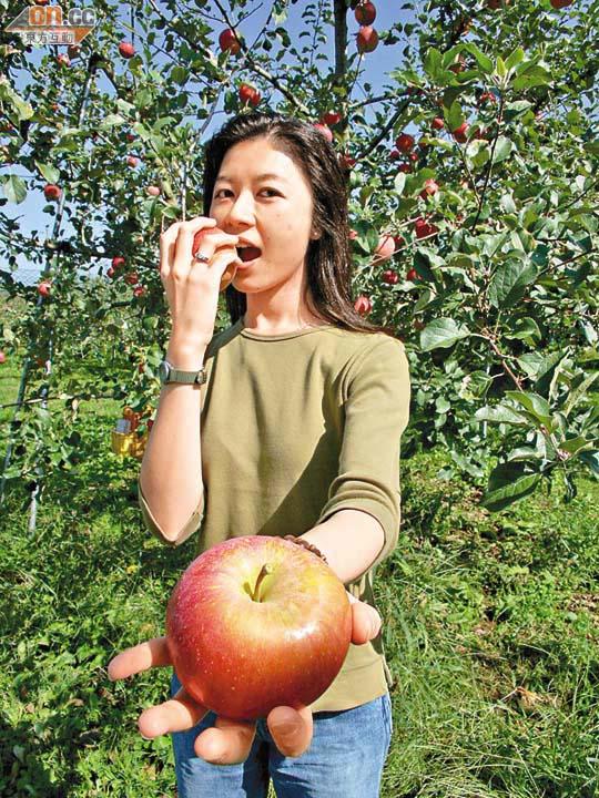 健康視窗:蘋果皮含熊果酸強化肌肉 - 東方日報