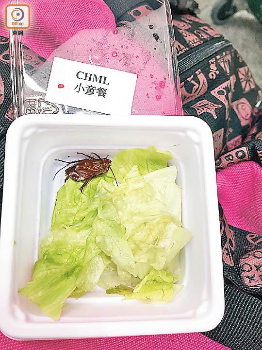 香港航空兒童飛機餐驚現曱甴 - 東方日報