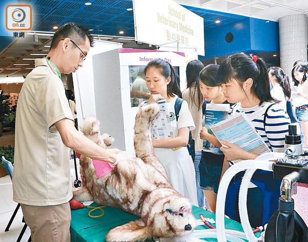 城大獸醫課程獲澳洲認證 - 東方日報