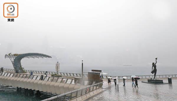 驚蟄迎黃雨 45.5毫米破紀錄 - 東方日報