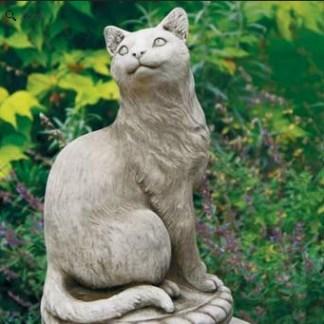 Katze klassisch - Katze klassisch auf Kissen
