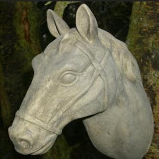 Pferdekopf Diablo