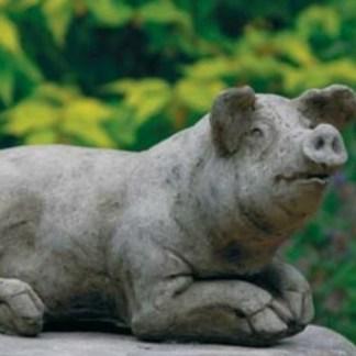 Schwein Alwine - Schwein Alwine liegend