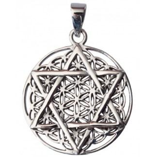 Anhänger Blume des Lebens mit Hexagramm Silber 925