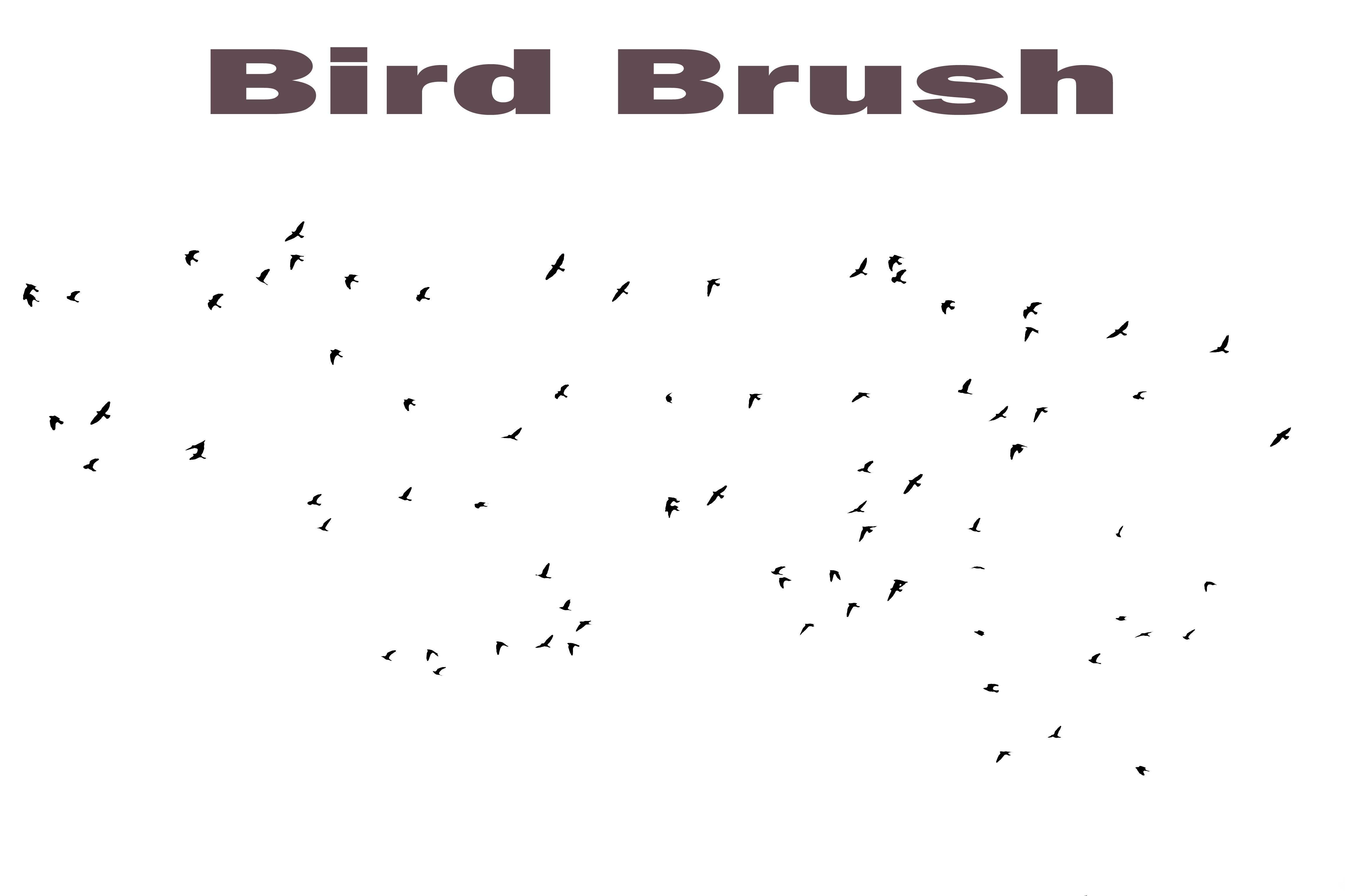 Bird Brush By Frankandcarystock On Deviantart