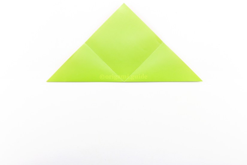 9. Fold the bottom point up to the top point.