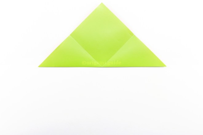 9. Fold the bottom corner up to the top corner.