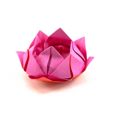 How to make origami flowers origami guide learn how to make a pretty origami lotus flower this traditional origami flower is easy to make from one sheet of square paper mightylinksfo