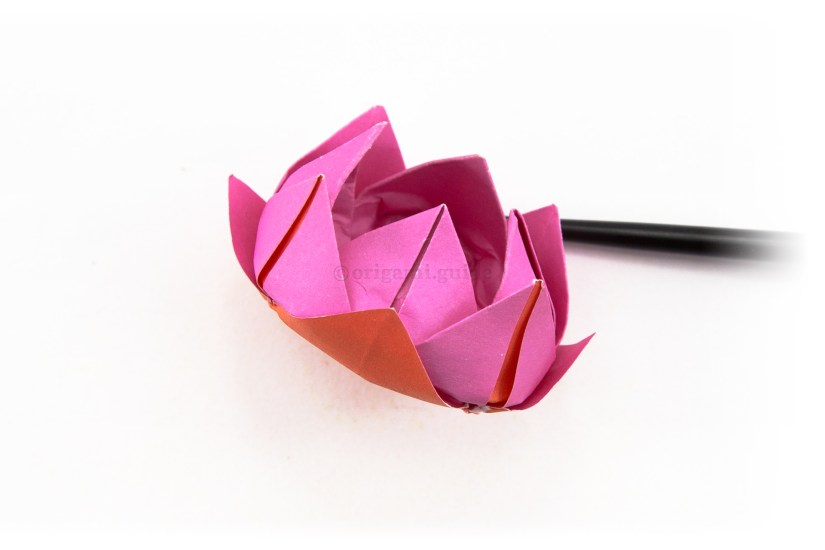 23. Optionally fold the last set of flaps from the back of the lotus.