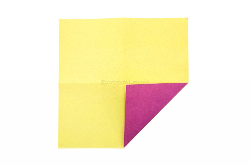 7. Fold one of the corners to the middle.