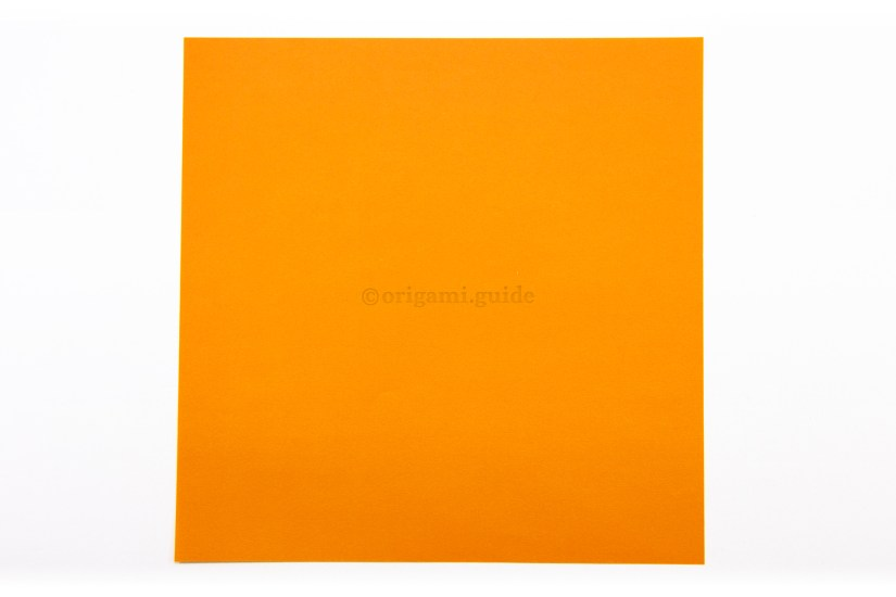 2. This is the back of the paper, our fox's ears will be this colour.