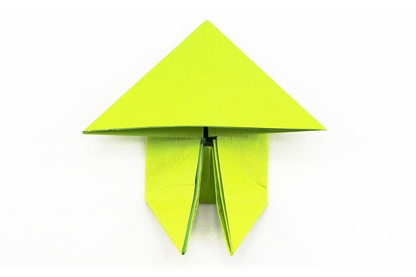 20. Fold the right and left lower points downwards.