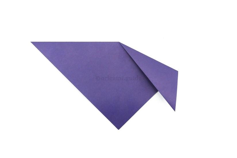 3. Fold the right point diagonally down.