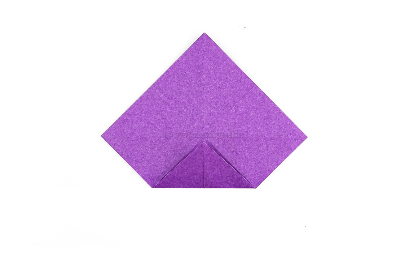 Fold the bottom corner to the middle point.