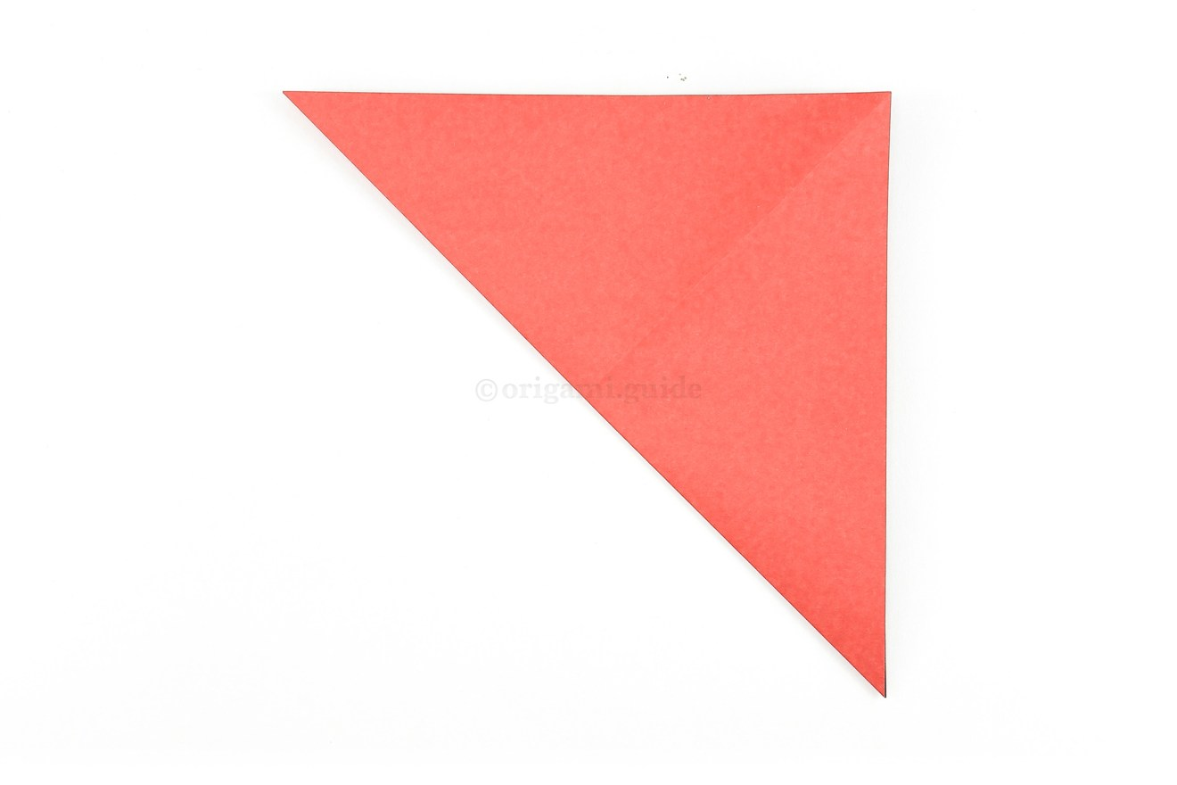 Fold the bottom left corner diagonally up to the top right corner.