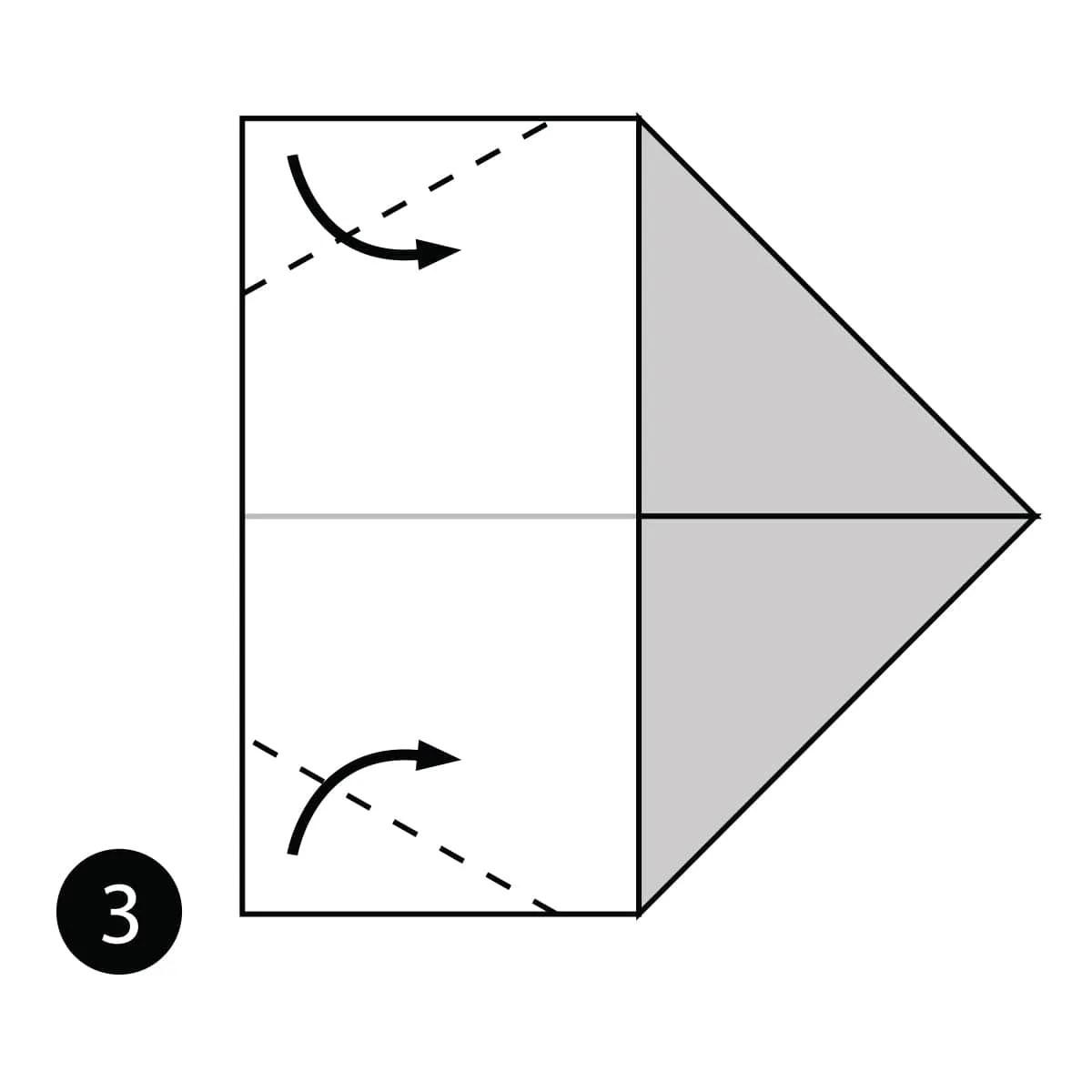 hight resolution of rhino step 3