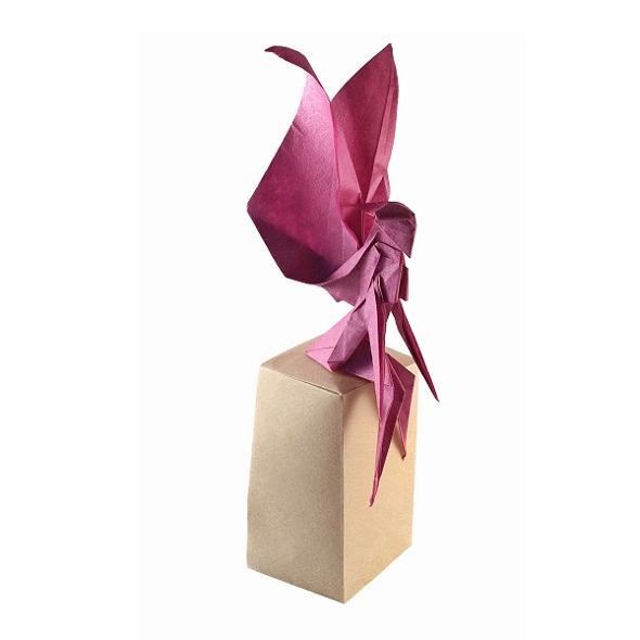 Origami Fairy Choice Image