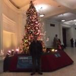 The 2015 OrigamiUSA Holiday Tree