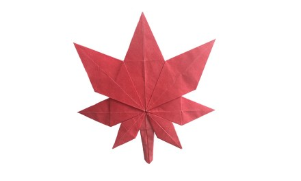 Fold An Origami Maple Leaf for Canada's Birthday!