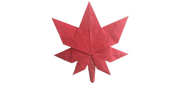 Fold An Origami Maple Leaf for Canada's Birthday!