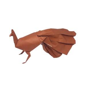 Neal Elias Origami Peacock
