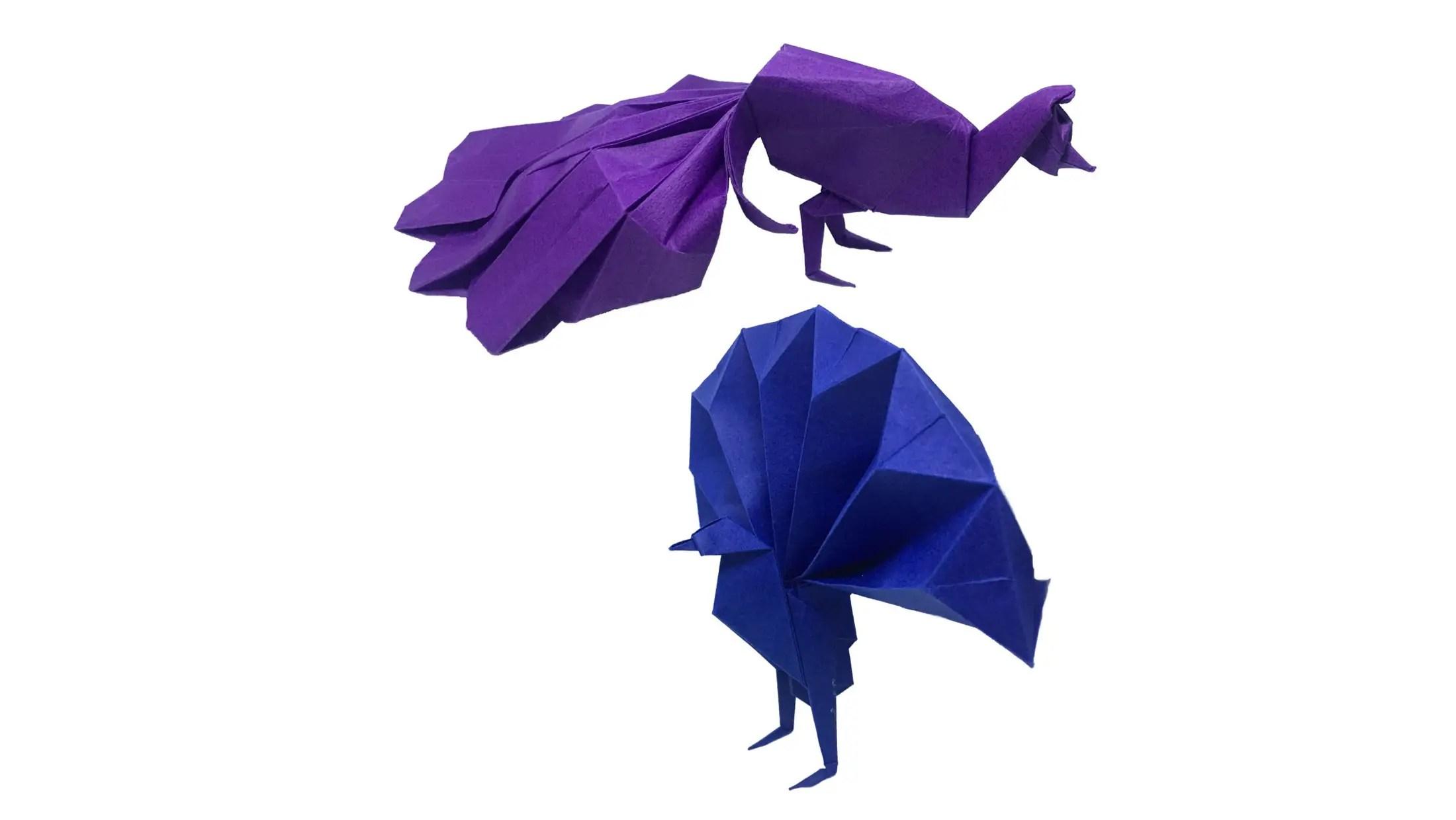 peacock bird diagram ez go golf cart wiring gas a pair of origami peacocks expressions