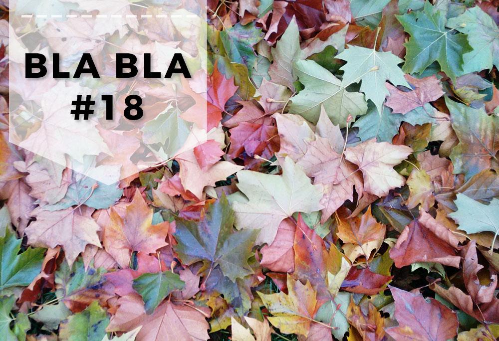 Blabla #18 - Małe podsumowania Listopada, bloSilesia