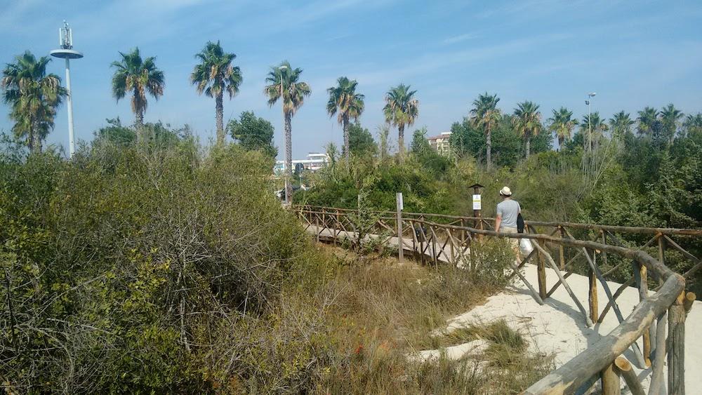 Plaże Apulii - Puglia co zobaczyć - Porto Cesareo