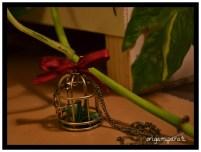 Grulla verde enjaulada